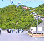 島ノ瀬ダム鯉のぼり